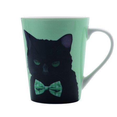 classy-kitty